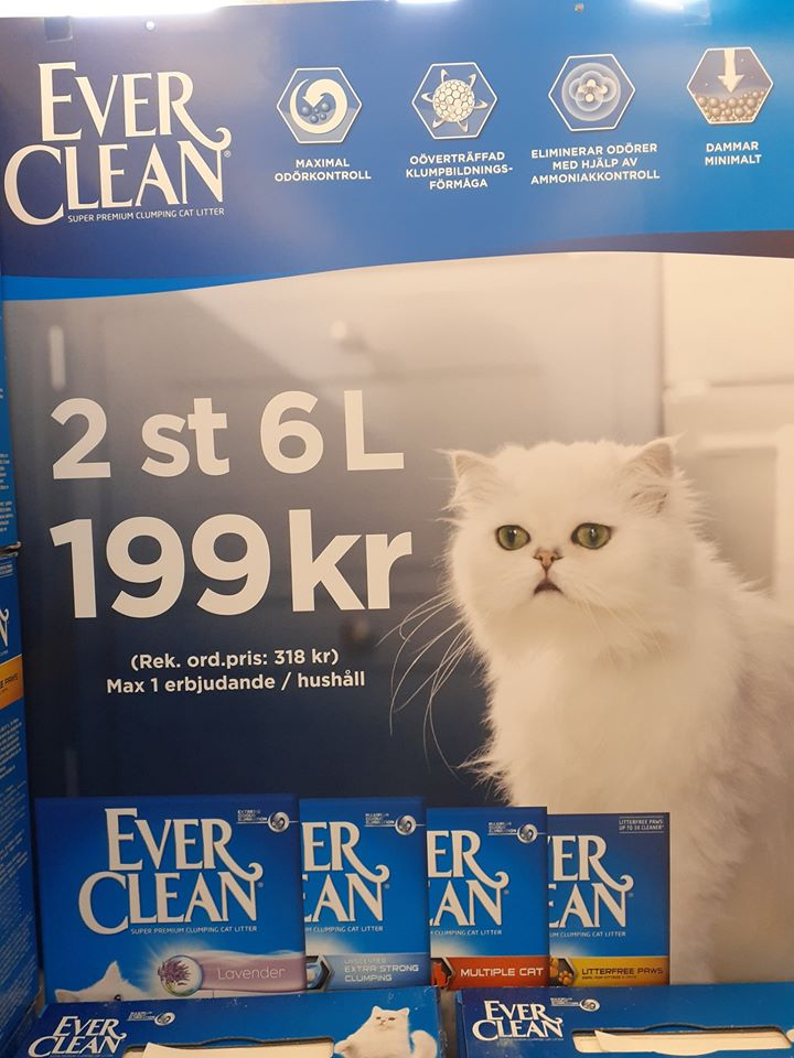 ever clean kattsand kampanj